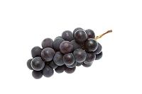 果物 ブドウ