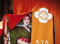 芸者 日本の文化体験をする女性