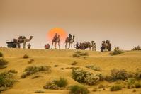 インド ジャイサルメール ラクダ