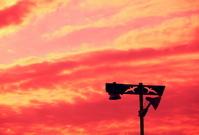夕焼け空と二羽のカモメの街灯