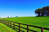 北海道 日高地方の牧場地帯の丘