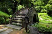 東京都 小石川後楽園 円月橋