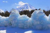 山梨県 西湖野鳥の森公園の樹氷と富士山