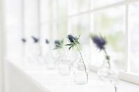 窓辺に飾られた花