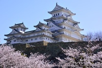 満開の桜 世界文化遺産 国宝 姫路城天守閣