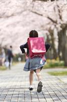 桜並木の下を走る小学生