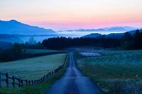 岡山県 牧場に続く道