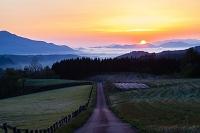 岡山県 牧場に続く道と朝日