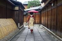 京都府 石塀小路 変身舞妓