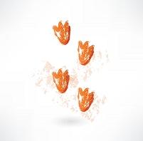 カモの足跡