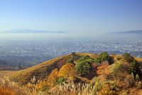 奈良県 紅葉の若草山より朝霧と金剛山葛城山