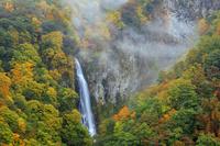 長野県 朝霧漂う紅葉の澗満滝