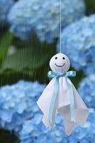 梅雨 てるてる坊主