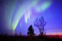 アメリカ合衆国 北極圏コールドフットにて 流星とオーロラ
