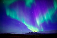 アメリカ合衆国 北極圏コールドフットに舞うオーロラ