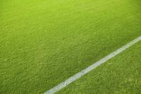 サッカー場の芝生