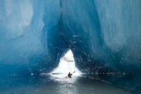 アラスカ 氷河