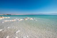 イスラエル  海
