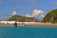 沖縄県 座間味港のザトウクジラのモニュメント