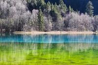 中国 九寨溝の湖