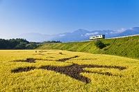 山梨県 小海線電車と甲斐駒ケ岳