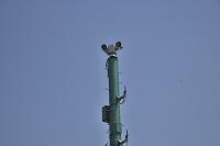 東京都 狛江市 多摩川 防災スピーカー CCDカメラ