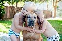 犬に寄り添う双子