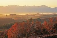 北海道 美瑛町 紅葉の朝霧の丘と十勝岳連峰
