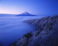 富士山 山梨県富士河口湖町 三ッ峠より