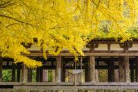福島県 喜多方市 長床と秋