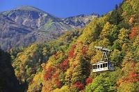 北海道 黒岳ロープウェイ