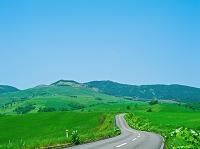 北海道 高原への道