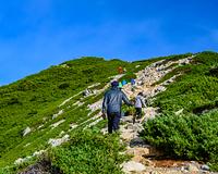 唐松岳頂上山荘から唐松だけに向かう登山者