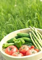 野菜を冷やす