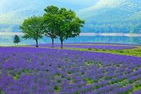 北海道 かなやま湖