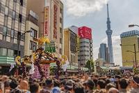 東京都 浅草三社祭