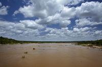 南アフリカ共和国 クルーガー国立公園 サビー川