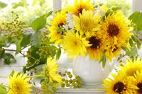 向日葵 夏の花