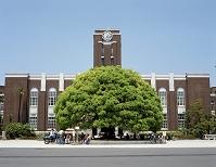 京都大学 5月 京都府 京都市