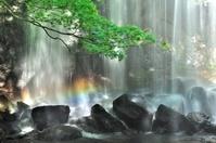 福島県 虹の滝
