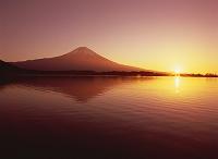 静岡県・富士宮市 田貫湖と富士山(朝)