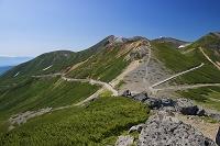 岐阜県 大黒岳から剣ヶ峰と乗鞍岳