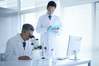 顕微鏡を覗き込む研究員