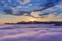 広島県 朝焼けの雲海