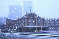 東京都 雪の東京駅とビル群
