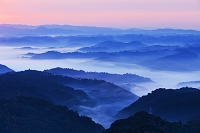 岡山県 朝の雲海と山並み