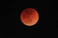 埼玉県 皆既月食中の月