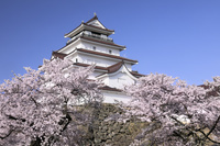福島県 鶴ヶ城と桜