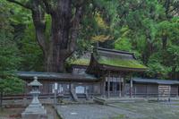 福井県 若狭姫神社