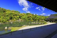 京都府 天龍寺 大方丈から見る新緑の曹源池庭園と小方丈